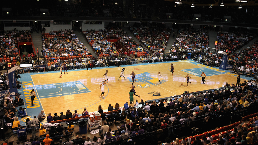 Interview with Chicago Sky President Adam Fox photo
