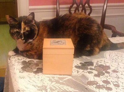 On Tzedakah Boxes and Feline Philanthropy photo