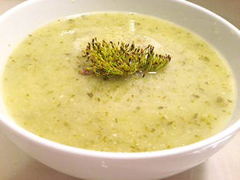 Zucchini Soup photo