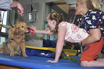 Canine Therapy photo 3